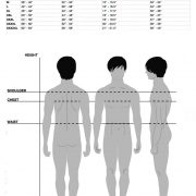 Male Measurements